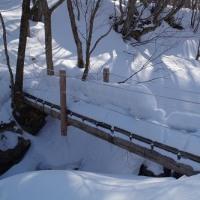中島台 鳥越川に沿って 0326