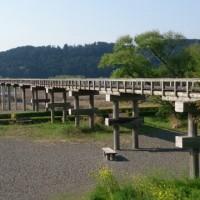 車中泊で一人旅(9)蓬莱橋(世界一長い木造歩道橋)