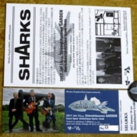 SHARKSライブの収穫