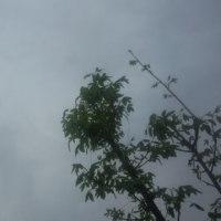 仙台の空29年5月1日、月曜日