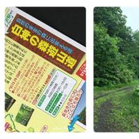 新緑の白神山地 撮影ツアー 3日目