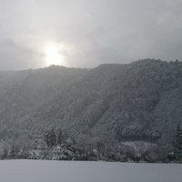 美山雪の情報 1月24日(火)正午