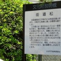 ひろしま遊歩100選ガイドツアー(五日市~廿日市)に参加する~!  2
