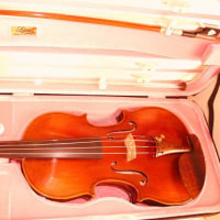 バイオリンケース 購入