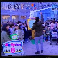 どさんこワイド179 奥さんお絵かきですよ!  おみごと8万円ゲット❗️ 2017.3.29 【横綱】
