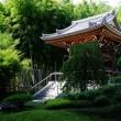 真夏の東圓寺