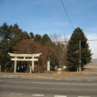 千代田新水路のオオワシ