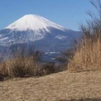 2017年は矢倉岳のご来光と富士山鑑賞でした。