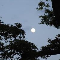 日本最古の詩歌療法
