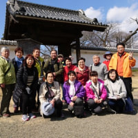 2017年3月は水戸偕楽園観梅と筑波山登山ハイクでした
