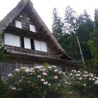 富山への旅(その2)