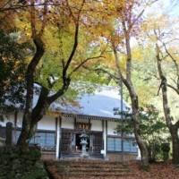 石松の菩提寺「大洞院の紅葉」