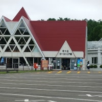 6月の北海道 羊ケ丘公園