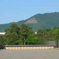 京都事情その36~大文字への散策 Part2 幼稚園の遠足で登るか?!~