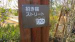 愛知県常滑市のイオンモール内にある招き猫ストリート
