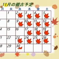 幸せなこと~11月の稽古予定~