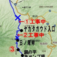 宮地~日ノ尾峠~高森 道路状況