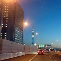 千葉北シェルティクラブ総会