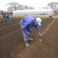 「農業・加工班」の様子