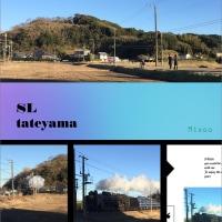 JR東日本、冬の臨時列車「SL館山」「DL勝浦」D51形が内房線・外房線を走行