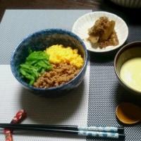 三色丼(三色ごはん)