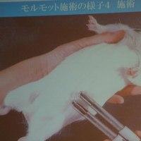 「がんとテルミー」 王 若皎 先生