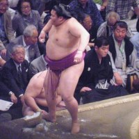 御嶽海、日馬富士を破る