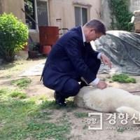 韓国ファースト犬は番犬