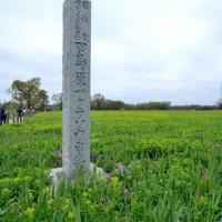 昨日の日記、日本サクラソウの原生地に行きました