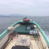 T&S沖釣り大会のまとめ