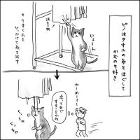 宇宙人vsネコ