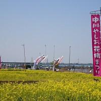 中川フラワーパークの花桃祭り