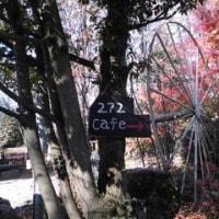 うえきやカフェ272