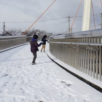 雪遊び・・・・・♪