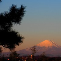 今日は富士山の日