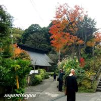 縁切寺、駆込寺と称されている「松岡山東慶寺」