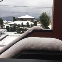 今季初の雪