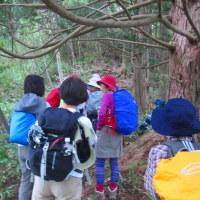 11 盛太ヶ岳(891m:島根県吉賀町)登山(続き)  初めての休憩を
