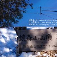 焼森山ほか12FEB2017