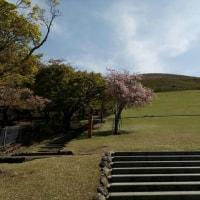 堺 登山ハイキング同好会有志にで奈良若草山ハイキング