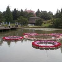 県民公園太閤山ランド・あじさい祭り