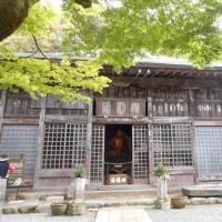 伊豆・かつらぎ山と修善寺日帰り旅