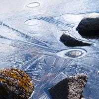 薄氷のある朝(Ⅶ)