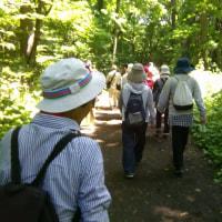 平成29年度 厚別区、北広島市、江別市合同ファミリー森林浴