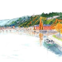 ムーズ川に架かるジャンプ橋を遠望した景観 ベルギー
