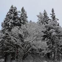 雪遊び・最終日