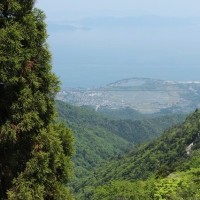 1053         真夏の! 比良花巡り~ 釈迦岳(比良198)      2017.05.20(土)  晴れ