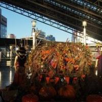 Happy Halloween at 時空広場♪