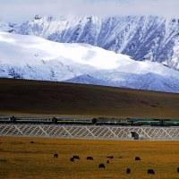 チベットの鉄道