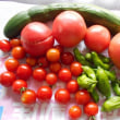 今日の収穫! ミニ菜園!